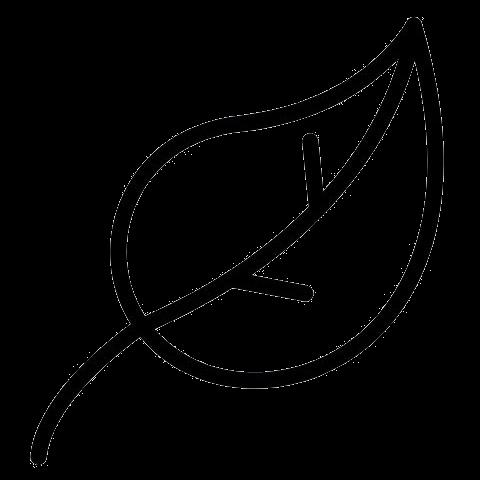 OPA ERWIN Nachhaltigkeit Symbol für ökologische Nachhaltigkeit Blatt-1