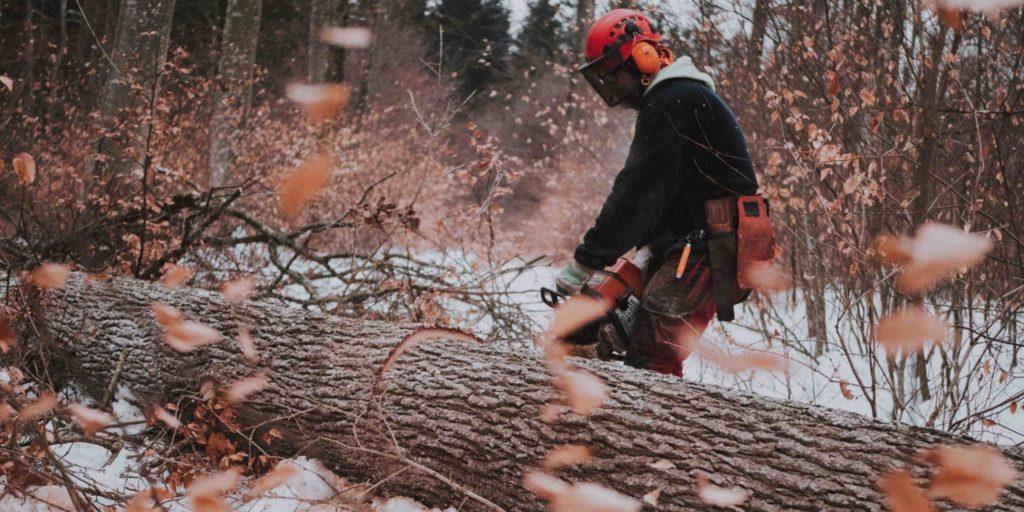 OPA ERWIN Mondholz schlagen im Winter